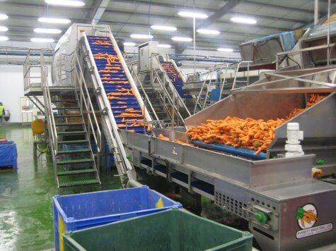 CRGP Kettle Produce 07